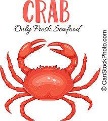 Crab vector illustration in cartoon style