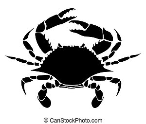crab - vector image of rab on white