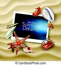 crabe, seashells, etoile mer, porte-photo, fond, cailloux, vecteur, mensonge, mer, plage, sablonneux