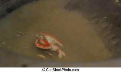 Chef cooking crabs in a big pan - Crabs cooking in a big...