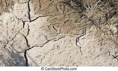Crack soil, Global worming effect. - Crack soil on dry...