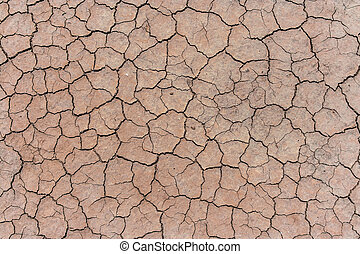 Cracked and dried mud background - Cracked and dried mud...