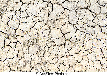 cracked clay ground in the dry season