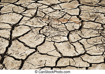 cracked clay ground into the dry season