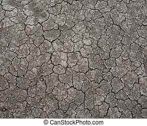 Cracked dirt and small stones from a drought.