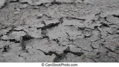 cracked dry soil closeup