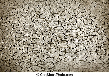 Cracked earth in dry season close up