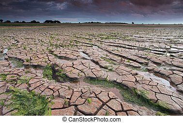 cracked mud on Wadden sea coast