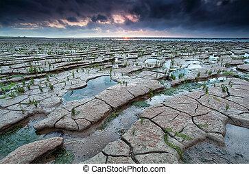 cracked mud on Watten sea coast