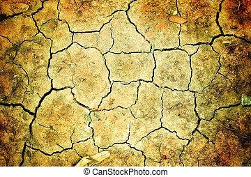 cracked of dry soil