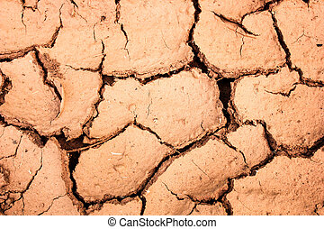 cracked soil during the dry season background
