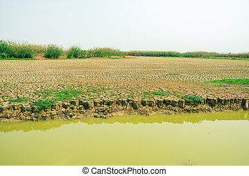 cracked soil in the bottom of a river showing drought