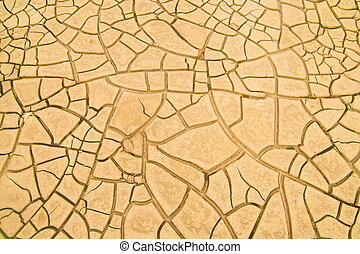 cracked soil in the desert