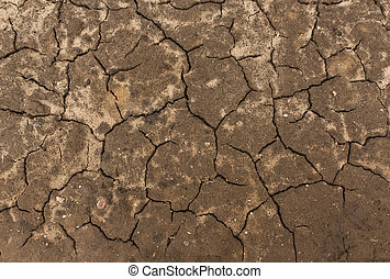 Cracked soil texture.