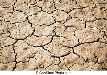 Cracked soil texture