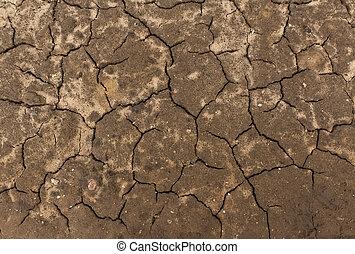 Cracked soil texture.