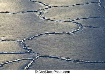 Cracking ice - sun reflecting on ice floes with many cracks
