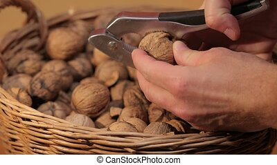 Cracking walnuts for eating - Cracking up walnuts with a ...