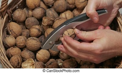 Cracking walnuts for eating - Cracking up walnuts with a...