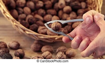 Cracking Walnuts - Man's hand cracking a walnut with the nut...