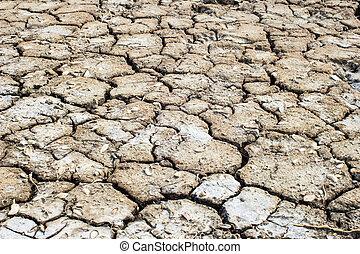 Cracks in the dried soil in arid season as a texture