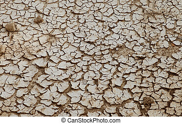 cracks in the ground,
