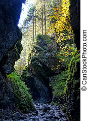 Cracow gorge in Tatras Mountains, Poland