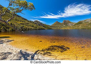 Cradle Mountain Lake Dove