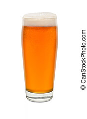 Craft Pub Glass with Beer #4