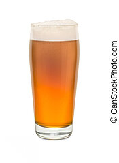 Craft Pub Glass with Beer #6