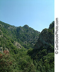 Craggy gorge 2