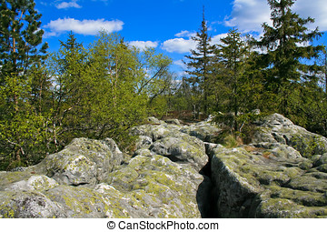 Craggy rocks. Sudetes / Poland - Table Mountains in Sudetes....