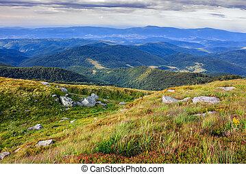 craggy stones on mountain green bumps - high mountain bumps...