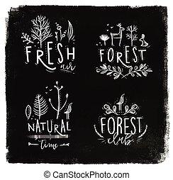 craie, étiquettes, forêt