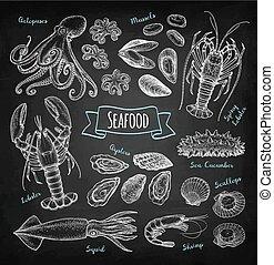 craie, croquis, fruits mer