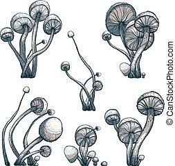 Vector EPS8 illustration. Fungus growing.