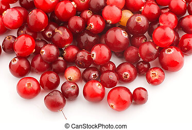 Cranberries are on a white background
