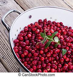 cranberries in a colander