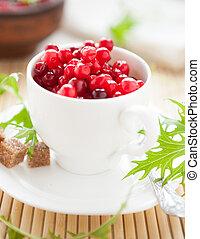 cranberries in a white cup, closeup