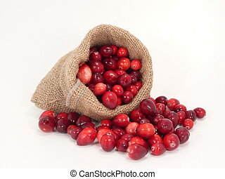 Cranberries in the bag