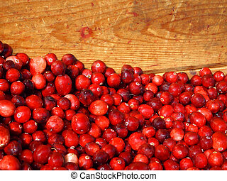 A wooden crate full of freshly harvested cranberries in the sunlight.