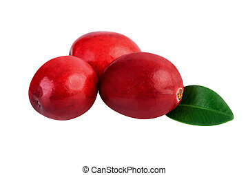Cranberries isolated on white. Image included clipping path