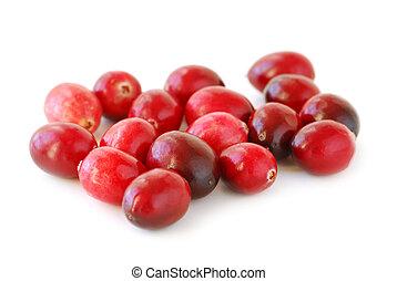 Cranberries macro - Fresh red cranberries macro on white...