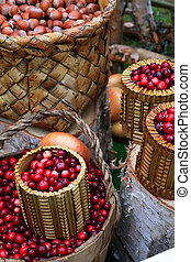 cranberry in basket