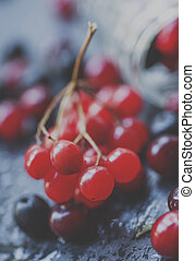 Cranberry, mountain ash, viburnum, chokeberry in a glass jar on a wet stone background, selective focus and shallow depth of field and toned image