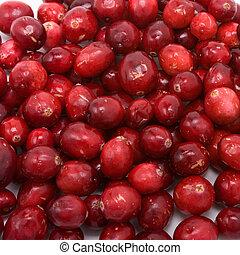 Cranberry Texture