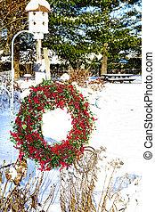 Cranberry Wreath Hanging In Garden