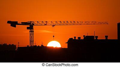 Crane and the sun