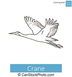 Crane bird learn birds coloring book vector - Crane bird...