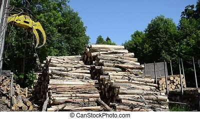 crane claw stack log - Crane claw moving and big stack of...